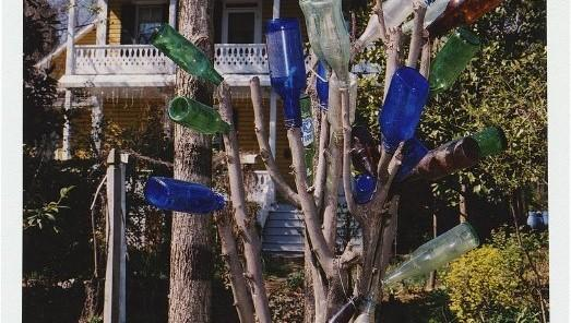 Multi-color bottles on a tree